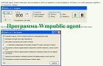 Программа Wmpublic agent